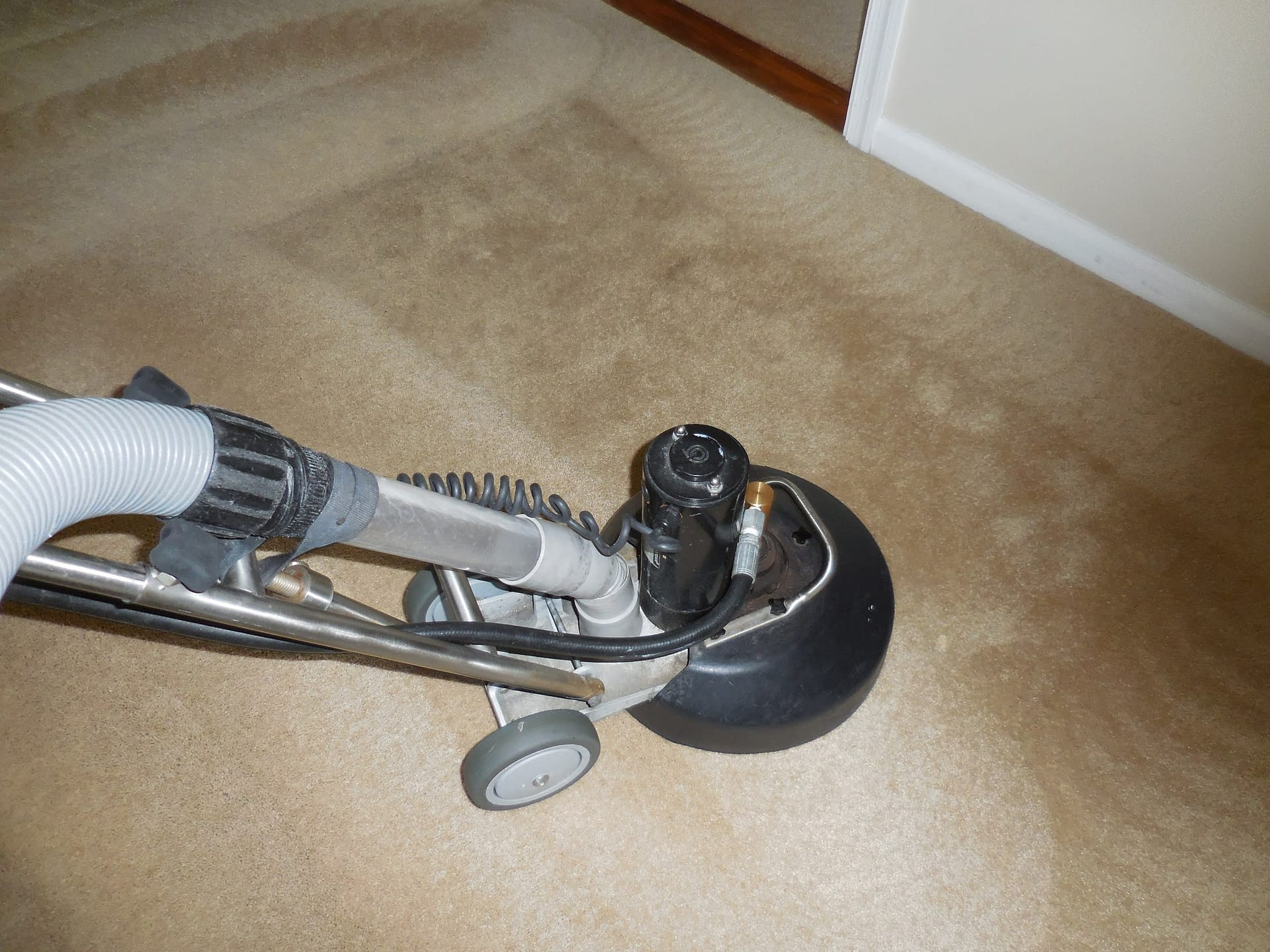 Superior carpet cleaning in Perkasie, PA