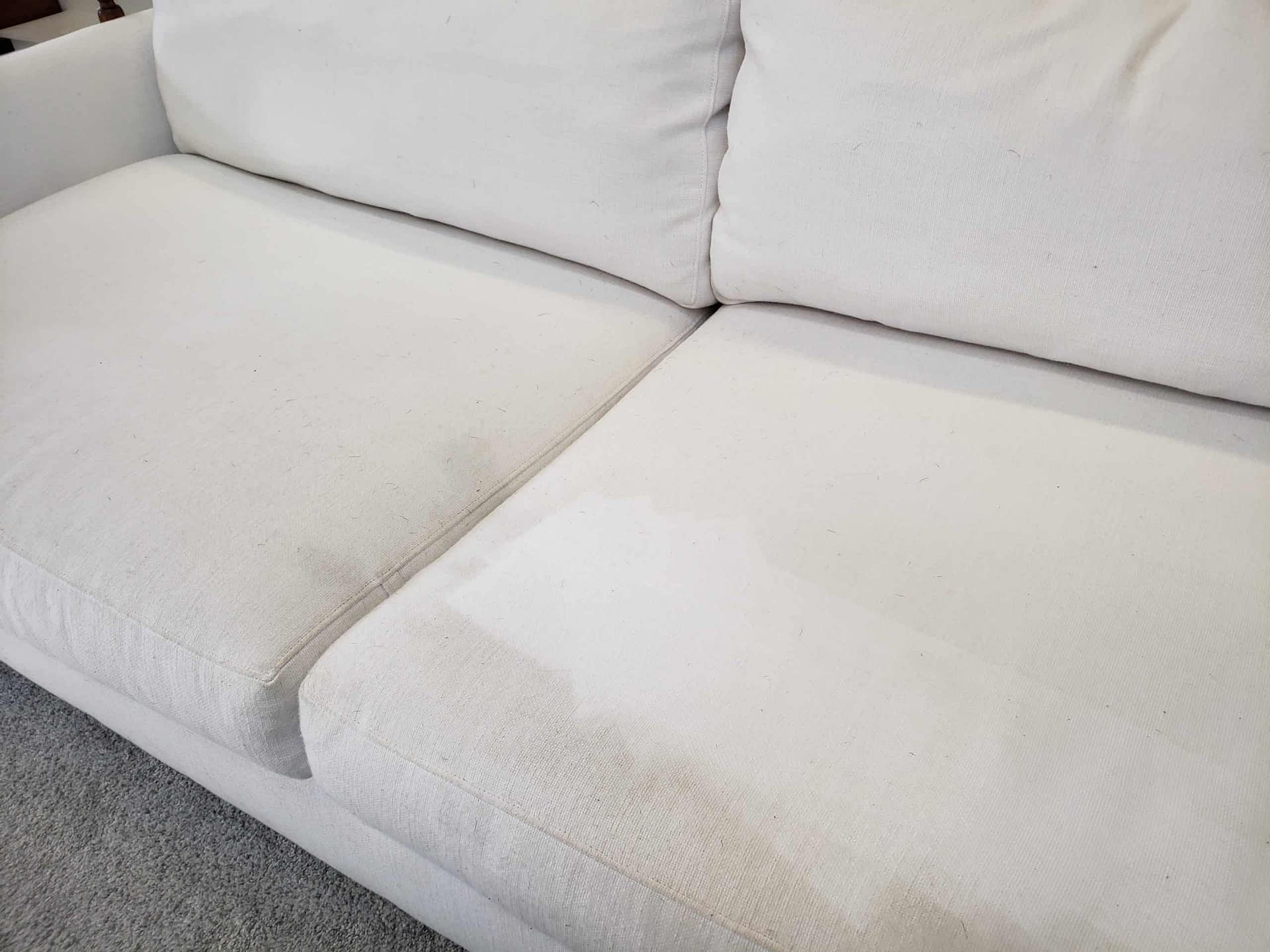 Blue Bell, PA white sofa upholstery cleaning