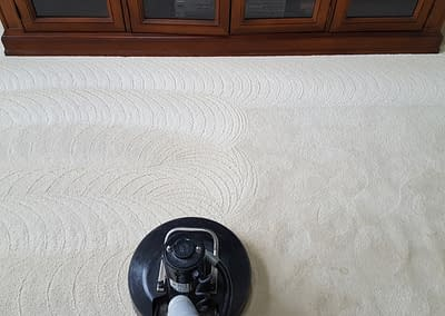 Carpet Cleaning in Warrington, PA