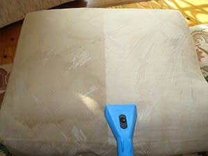 upholstery service cleans cushion