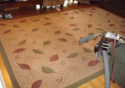 Area rug cleaning in Ambler, PA