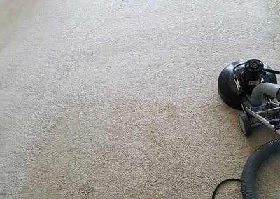 Telford, PA carpet cleaning company