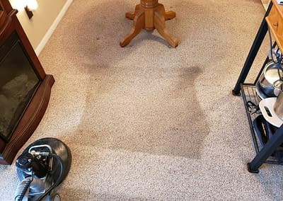 Dining room carpet cleaned in North Wales, PA