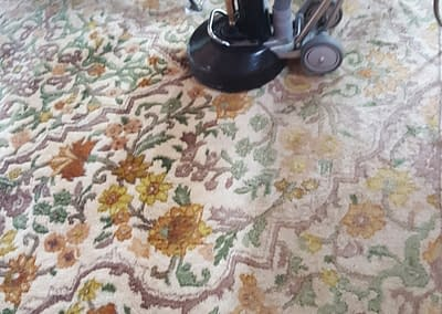 Rug cleaning in North Wales, PA
