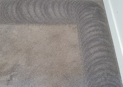 Newtown, PA Carpet Cleaning