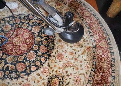 Circular rug cleaned in Perkasie, PA