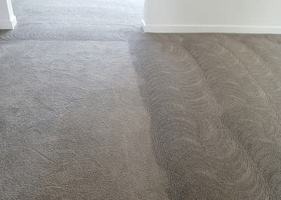 Carpet cleaning in Newtown, PA