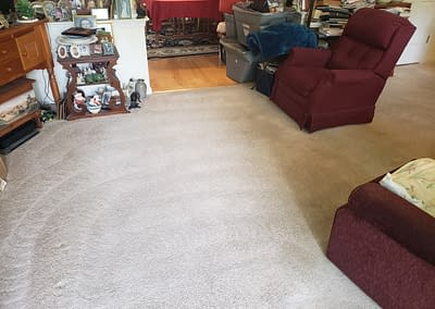 Living room with pet stains completely cleaned
