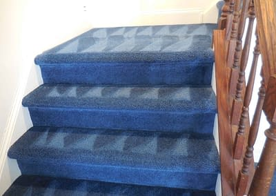 Clean blue carpeted stairs