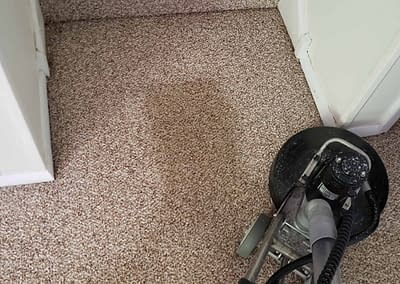 Berber carpet cleaned in Ambler, PA