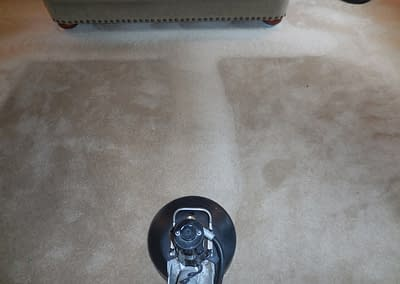 Carpet Cleaning in Perkasie, PA