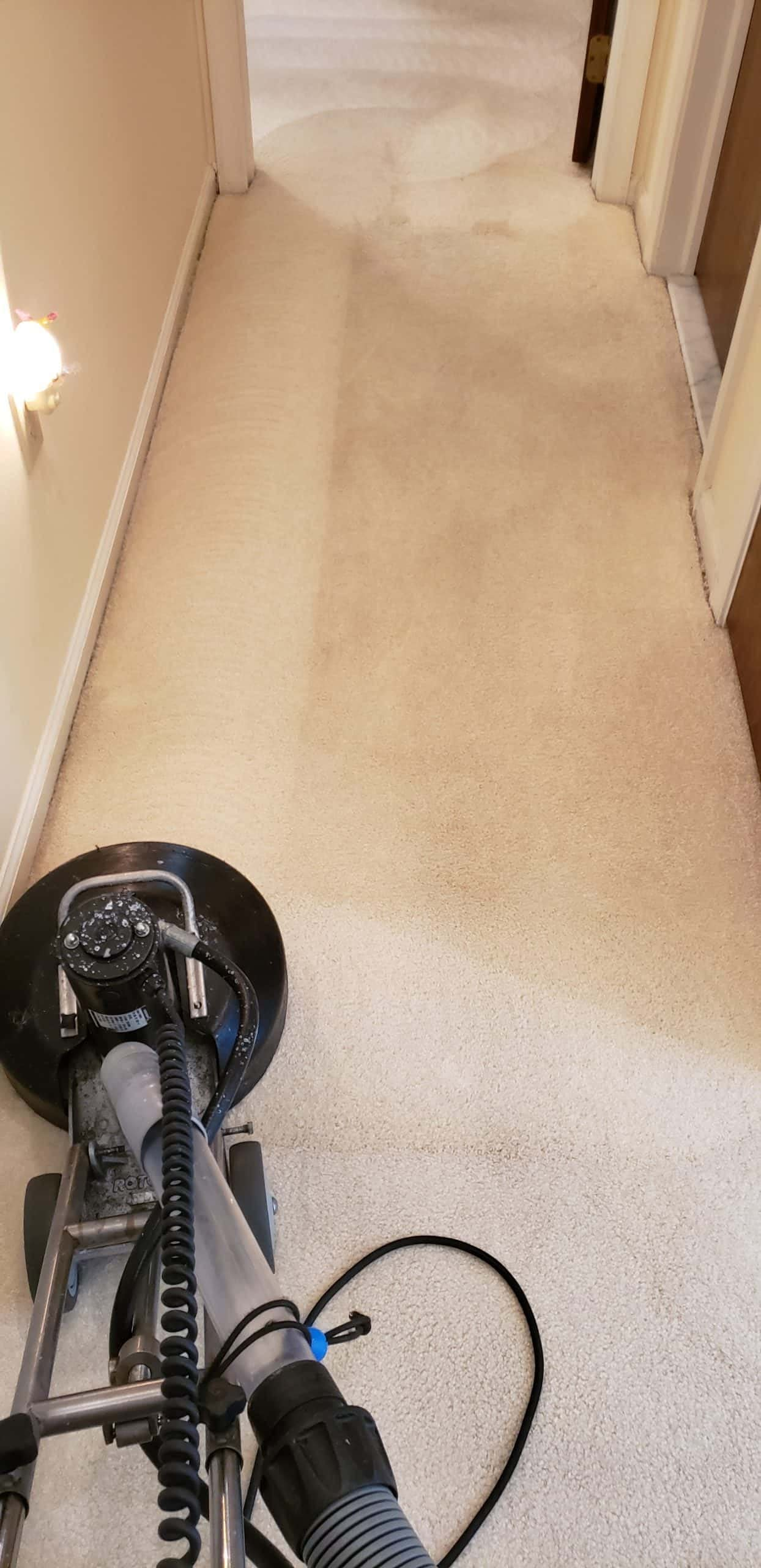 Hallway Carpet Cleaning in Center Valley, PA