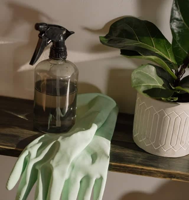 A spray bottle and gloves that someone is ready to use in order to apply good deep cleaning tips.