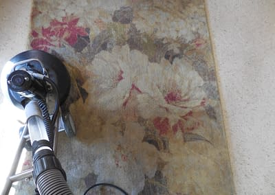 Rug Cleaning in Doylestown, PA