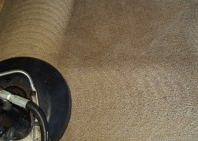 Carpet cleaning company in Telford, PA