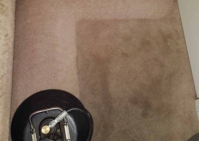 Montgomery County, PA carpet cleaning