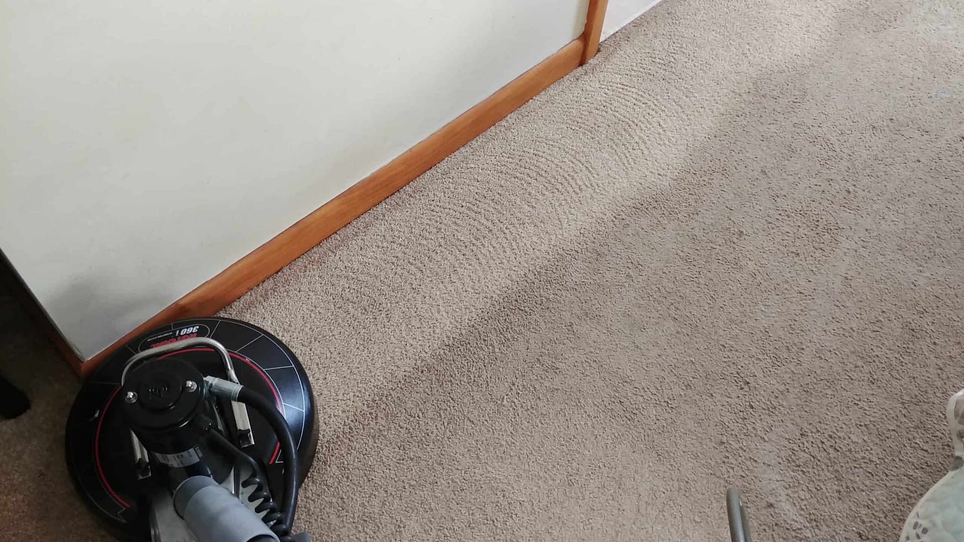 Montgomery County, PA carpet cleaners