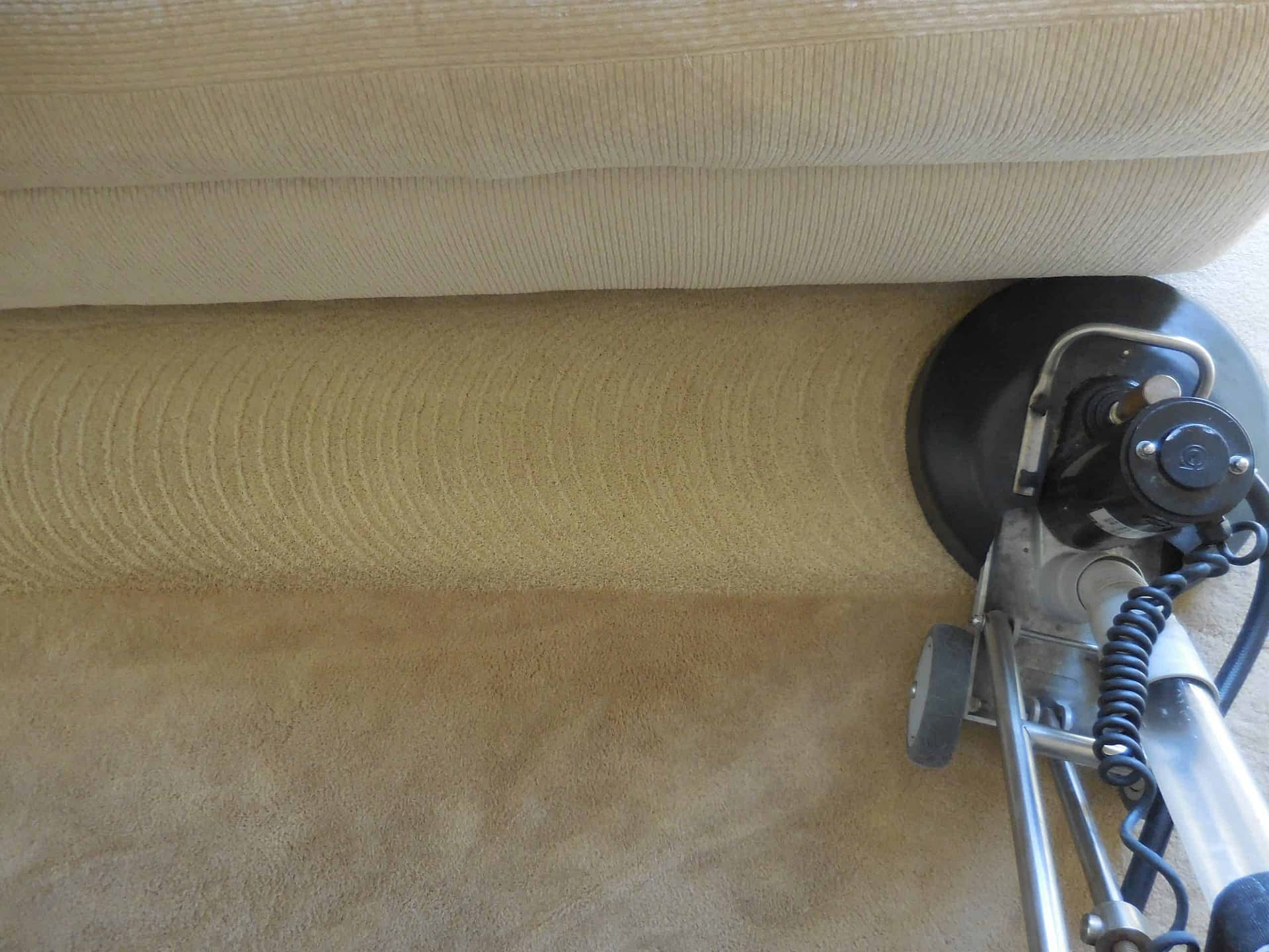 Bedroom carpet cleaning Doylestown, PA