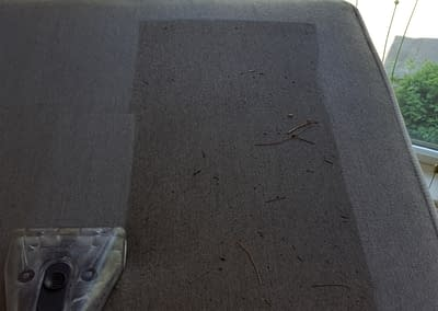 Professional upholstery cleaning in Doylestown, pa