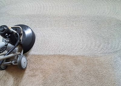 Carpet Cleaning in Blue Bell, PA