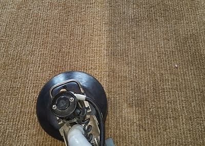 Brown carpet cleaned in Doylestown, PA