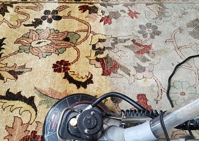 Montgomery County, PA rug cleaning