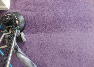 Purple carpet cleaned with RotoVac