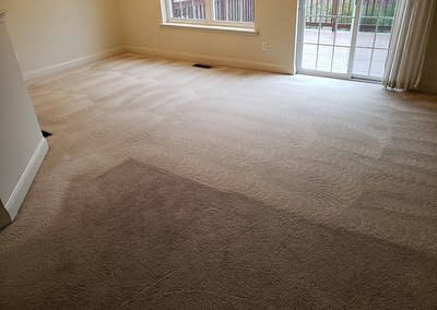 Montgomery County, PA dining room carpet cleaning