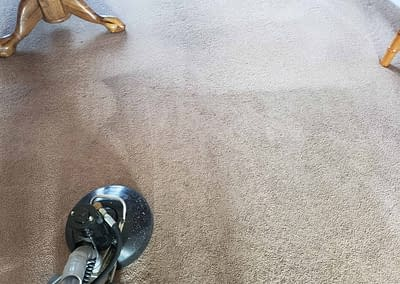Cleaning carpet in Bucks County, PA