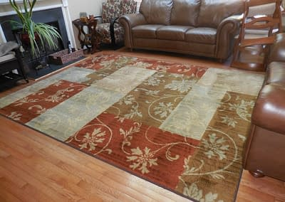 Living room rug cleaned in Doylestown, PA