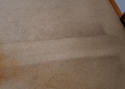 Sellersville, PA carpet cleaning