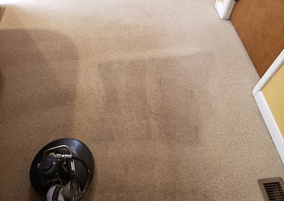 Carpet Cleaning in Telford, PA