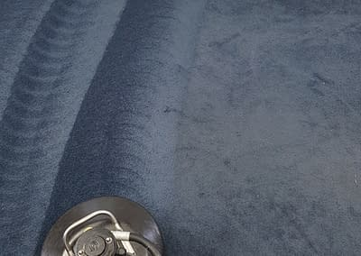 Carpet cleaning done in Warminster, PA
