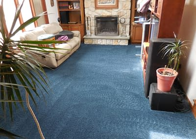 Blue carpet cleaned in North Wales, PA