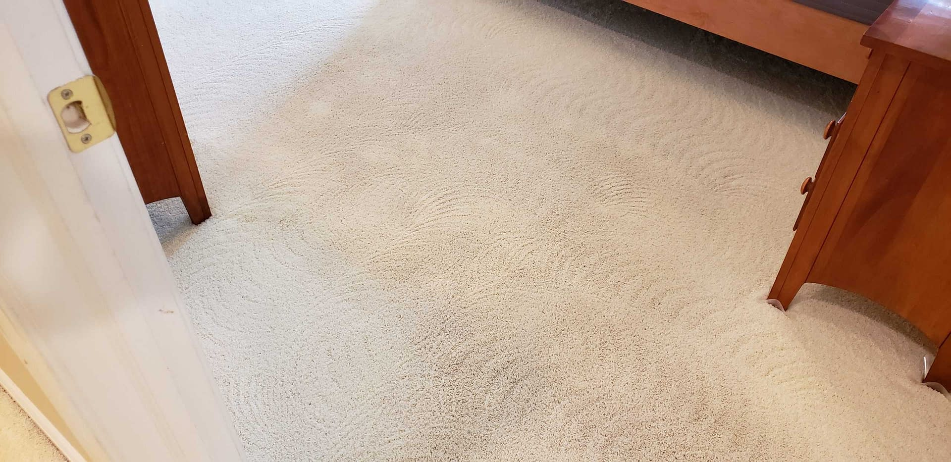 Bedroom carpet cleaned in Chalfont, PA