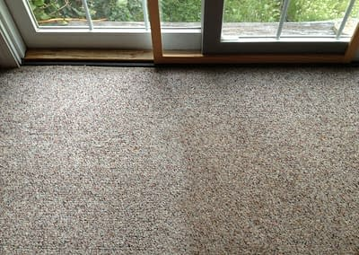 From dirty carpet to clean in Perkasie, PA