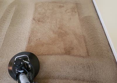 Cleaning carpet in Harleysville, PA with the RotoVac