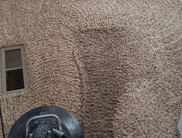 Dirty Carpet cleaned in Macungie, PA