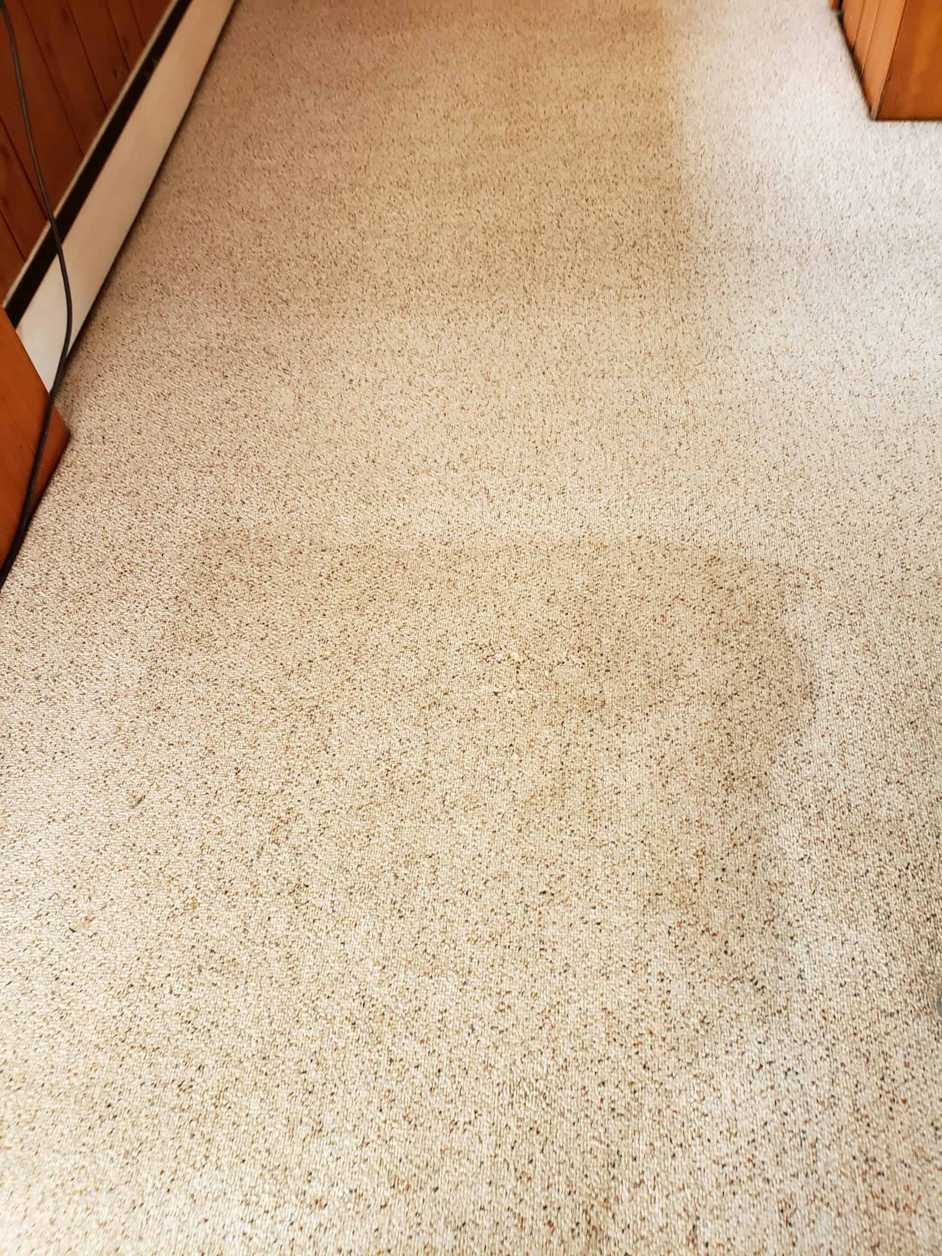 Bucks County, PA berber carpet cleaning